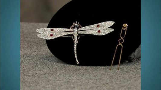 Tonight revisit classic Antiques Roadshow l PBS appraisals and find out if the value of these earrings and dragonfly brooch have taken flight in 15 y #news #alternativenews