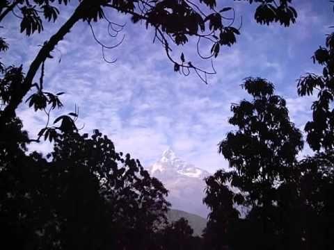 Widok na Machhapuchhare z dzungli kolo Pothany (Annapurna Base Circuit)