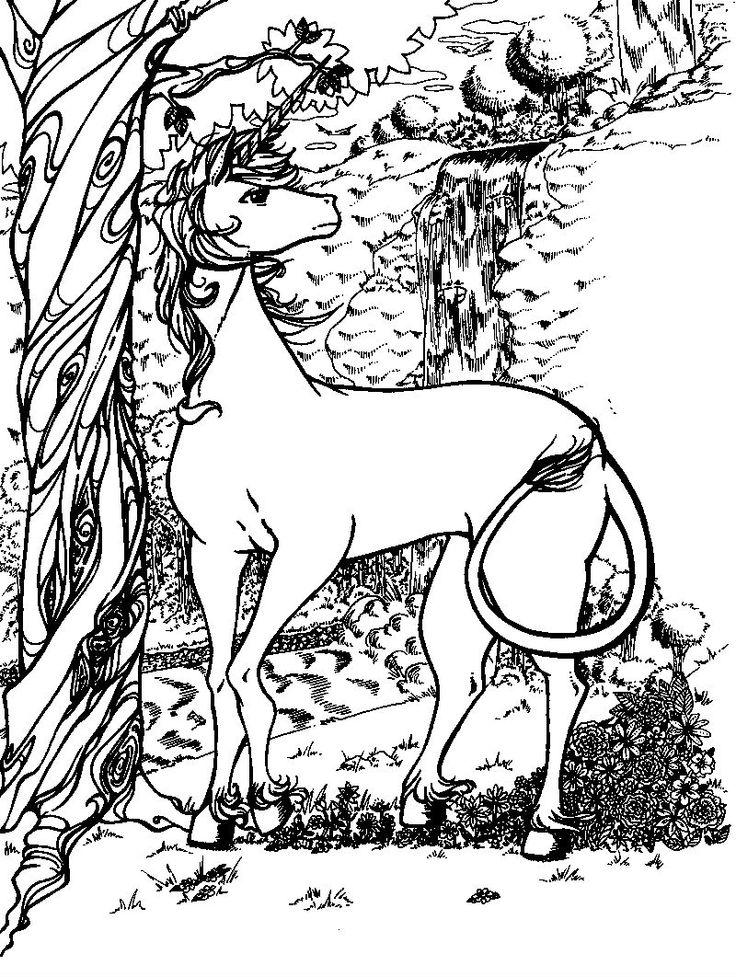 11 besten Unicorns Bilder auf Pinterest | Einhörner, Malvorlagen und ...