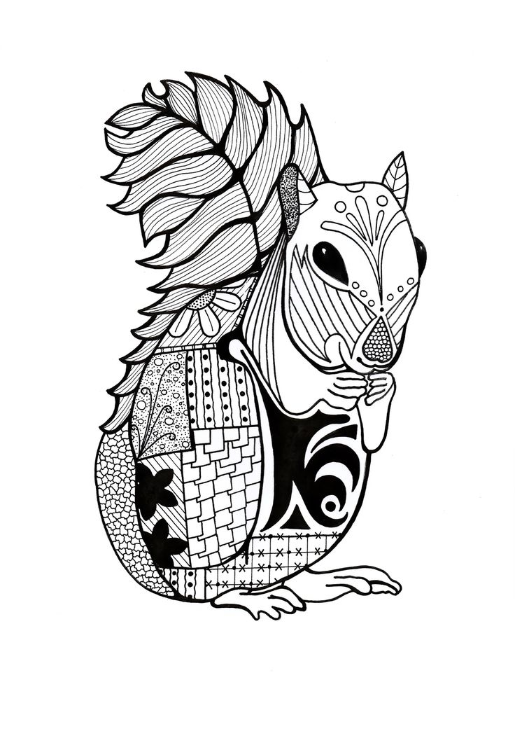 789 best Animal Coloring Pages