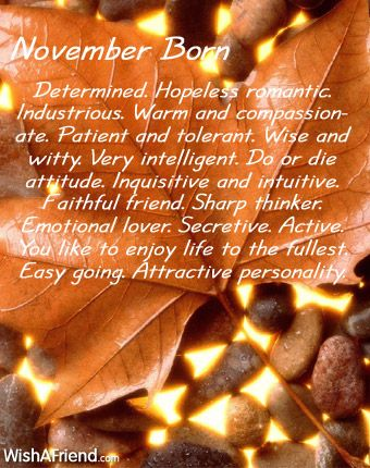 What does your Birth Month say about you? - November born- reasonably, but not completely, accurate I suppose :)