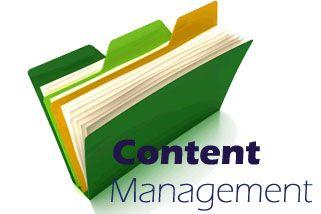 CMS Development India http://www.evincedev.com/cms-development