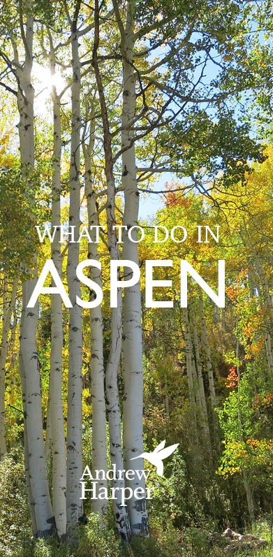 Wondering what you should do in Aspen, Colorado, in 2015? We have a curated list of events from ski weeks to film festivals to the annual FOOD & WINE Festival.