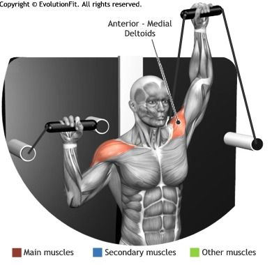 SHOULDERS -  SHOULDER PRESS ALTERNATED CABLE MACHINE