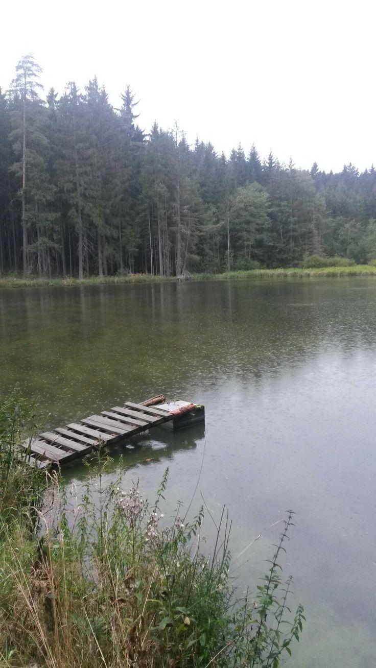 Knezsky rybnik2
