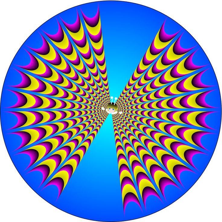 -  expbutterflyKitaoka optical illusions   Magical Illusions