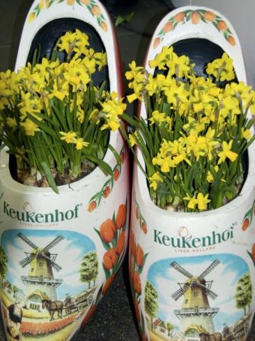 Keukenhof Gardens, Lisse, Holland, Netherlands