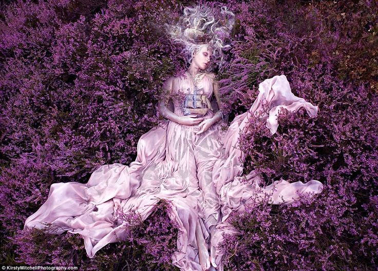 Lavender: Models, Photographers, Mothers, Wonderland, Daughters, Fields, Fairies Tales, Mitchell Photography, Kirstie Mitchell