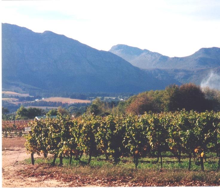 Franschhoek, Western Cape