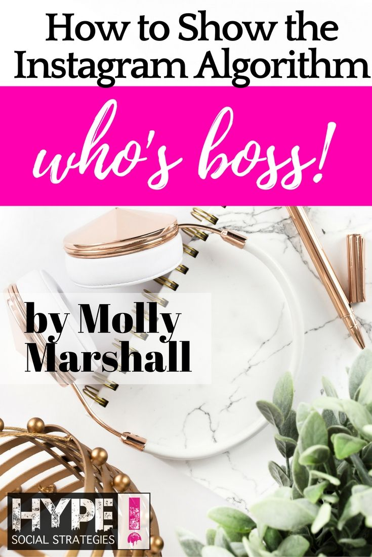 How to Show the Instagram Algorithm Who's Boss by Molly Marshall — Hype Social…