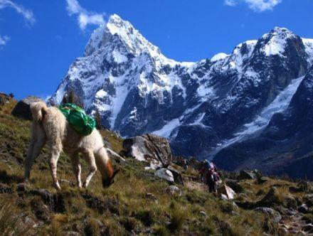アコンカグア山 アルゼンチン