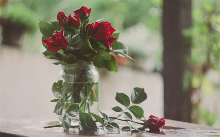 Download wallpapers red roses, red flowers, glass vase, bouquet of roses