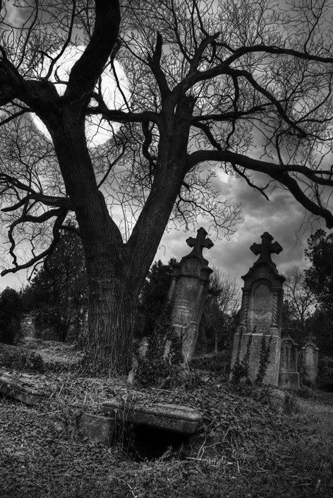 Cemetary (please follow minkshmink on pinterest) #scary