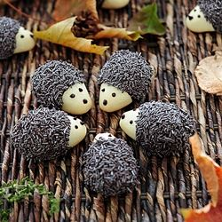Hedgehog Cookies : : I would love to make these, but the recipe is in Serbian. use Google translate to see it in English... it's a hoot!!