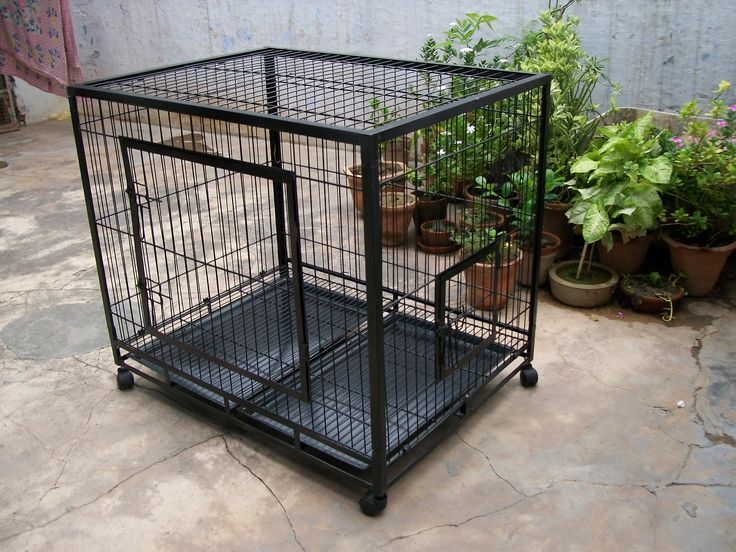 used bird cages for sale