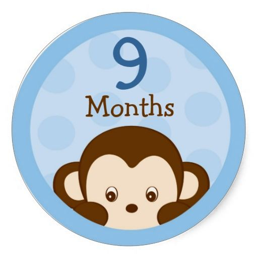 Shop mod monkey monthly milestone stickers created by poshpartyprints