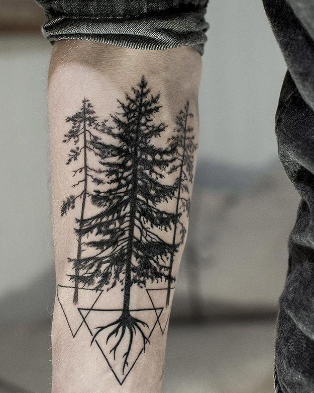 It S Almost All Healed Now Forearm Pine Tree Tattoo With Roots And Triangle By Radical Impressions At Ott Tattoos For Guys Pine Tattoo Tree Tattoo Men