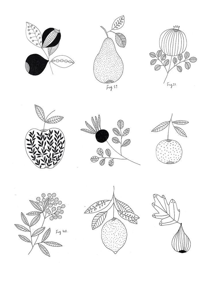Botanical fruit print. By Ryn Frank www.rynfrank.co.uk