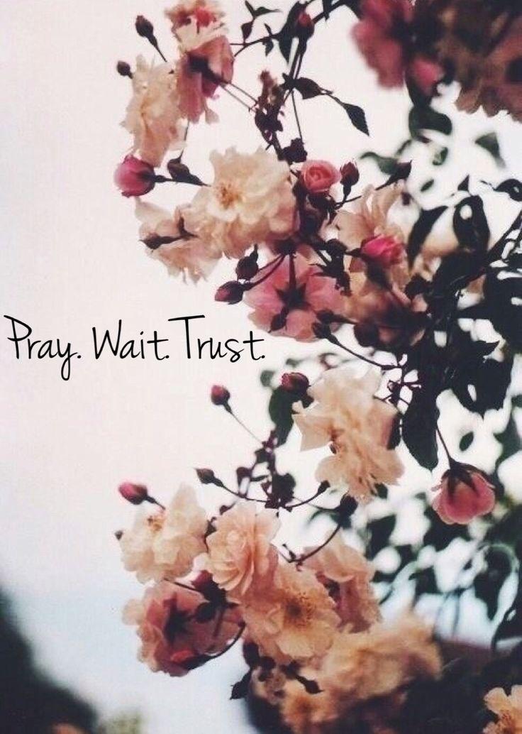 ✨ #currentvibesbelike #leaningonHim #Trusting ✨