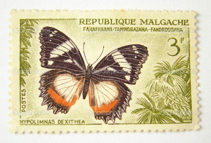 Madagascar timbre-poste avec papillon sur fond blanc