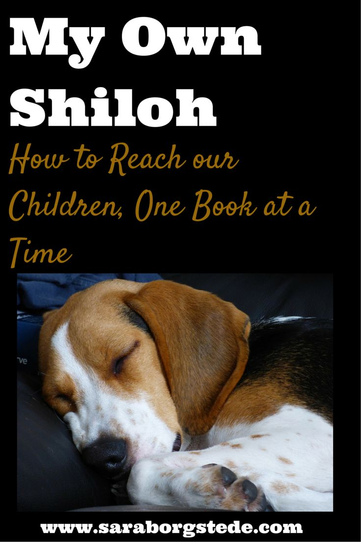 Do all those hours of reading the same books to our kids over and over really make a difference? How about chapter books they could be actually reading themselves? YOU BET it makes a difference. Click here to read why, and why it took a big wake up call for me to pick up some books with my kids again.