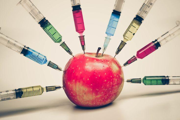 Διατροφικά πειραματόζωα; Έρευνα παρείχε ενδείξεις για αυξημένο κίνδυνο ανάπτυξης καρκίνου, σημάδια τοξικότητας στα νεφρά και στο ήπαρ και πρόωρο θάνατο.