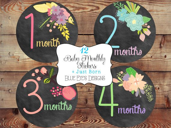 Monthly Baby Girl Bodysuit Stickers,Baby Age Stickers,Monthly Baby Milestone Stickers,Baby Monthly Stickers,Baby Month Sticker,Baby Girl on Etsy, $12.50