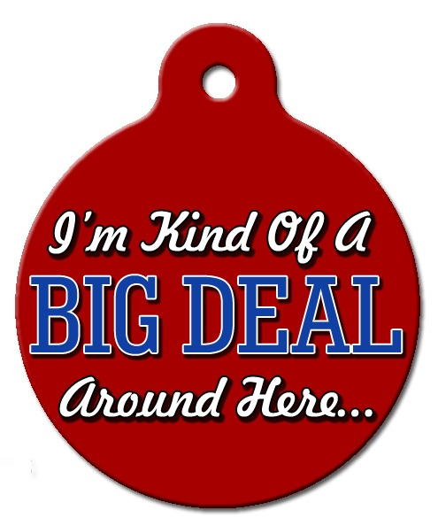 I'm Kind Of A Big Deal Around Here Pet ID Tag http://www.wagatudetags.com