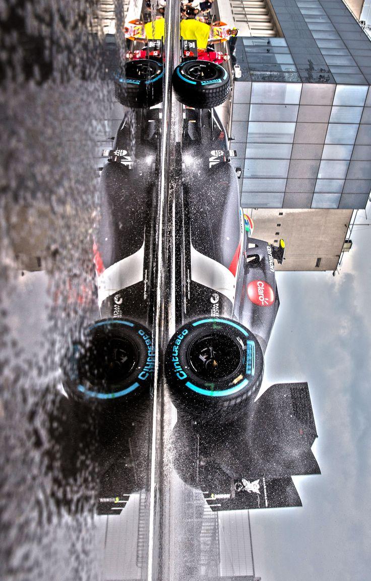 2014 Hungarian Grand Prix. Sauber F1 Team