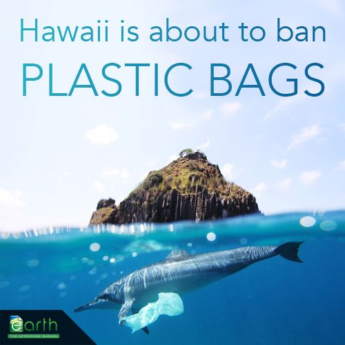 Hawaii is soon to become the first state in the US to enforce a plastic bag ban. Watch the ripple effect across the other states!