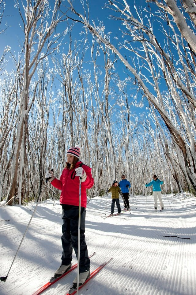 Snow Australia - cross country skiing at Lake Mountain, Victoria #snowaus