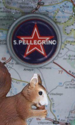 Pellegrino (Detall) Pellegrino i Lis. Díptic. Collage i assemblage. Caixes de 10 x 10 x 10cm.