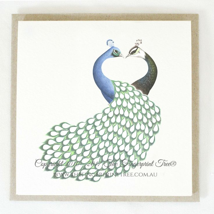 Gift card - Peacock & Peahen:  Cards! by The Fingerprint Tree® is our couture range of gift cards featuring illustrations by Ray Carter, Chief Artist & Founder.  Made-to-order and Giclée printed at our Southern Highlands studio.   We sell direct to the public and to retailers.