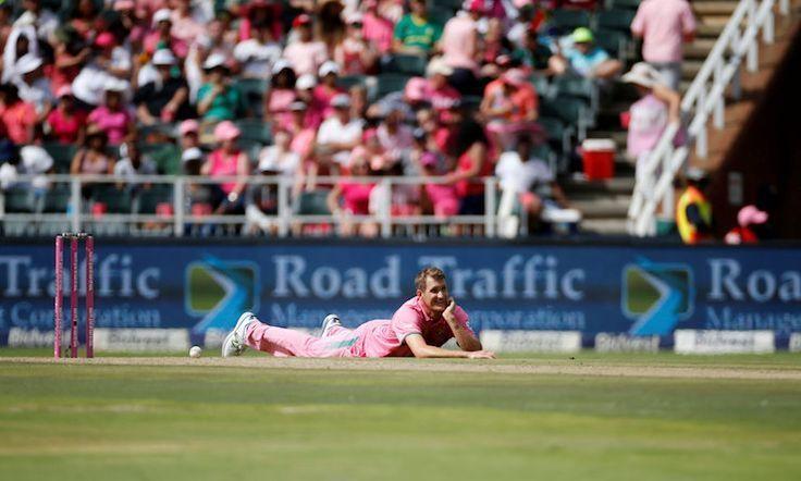Kriket maçına zorunlu 'arı istilası' arası