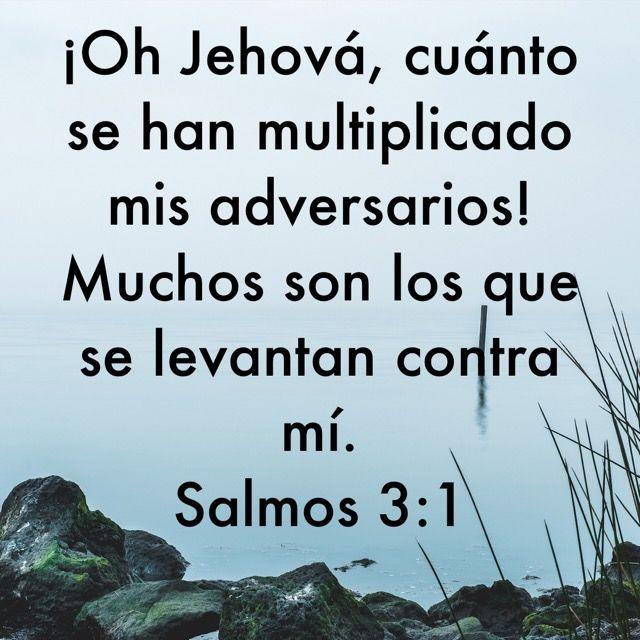 Pin De Alejandra Caffaro En Jehova Es Todo Salmos Versiculos