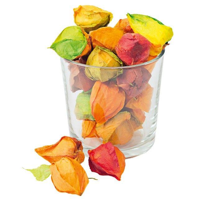 Die Deko-Physalis lässt sich wunderbar mit anderen Deko-Früchten kombinieren und sorgen für eine tolle #herbstdeko in Ihrem zu Hause.
