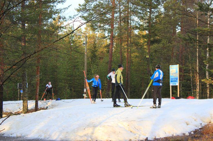 First snow tracks in use in October 2015. Located in Rovaniemi, Finland. Ensilumenladut käytössä Rovaniemen Ounasvaaralla lokakuussa 2015. @Santasport