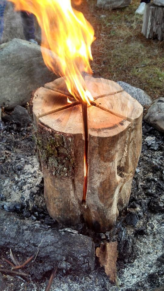"""To Make a Swedish Flame, stabilize the log, chainsaw 4 full diameter cuts 3/4 down the 30"""" length of the log. [mcg]"""