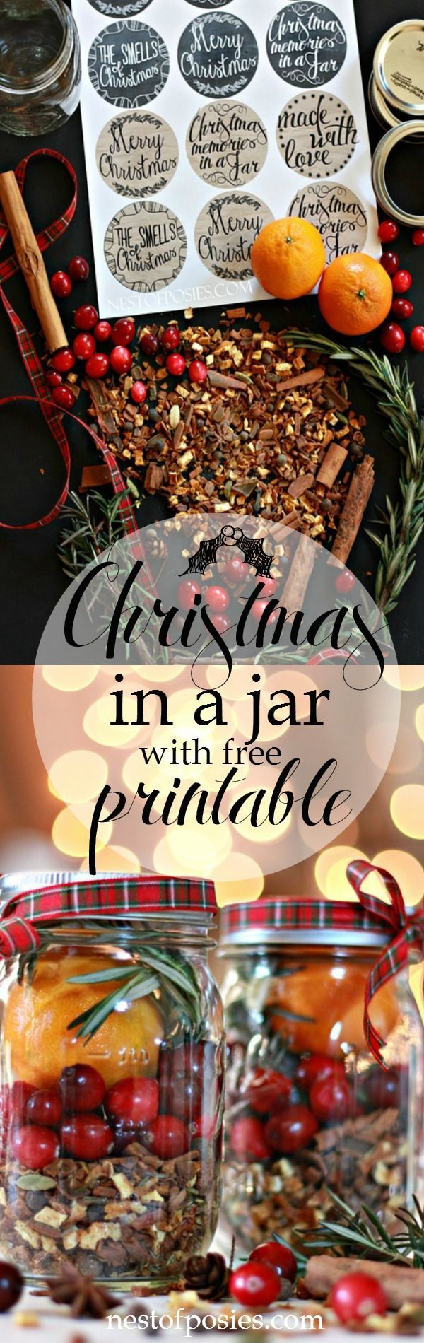 How to Make this Easy and Inexpensive Christmas Gift - Christmas in a Jar, with Printable - uses premixed spice mixture from World Market, a jar, some fruit and ribbon. This is a perfect gift to have on hand for last minute visitors - via Nest of Posies