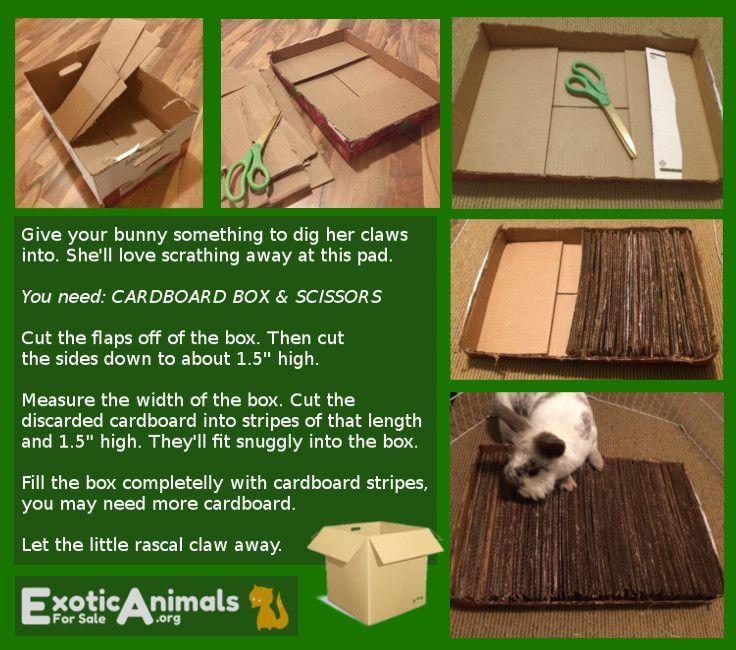 Toys For Bunnies : Bunny shredding mat diy rabbit toys that are cheap