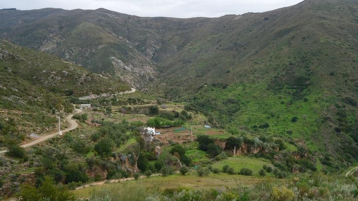 La Garnitilla-Olias