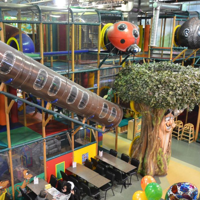 Forest Playground Interior