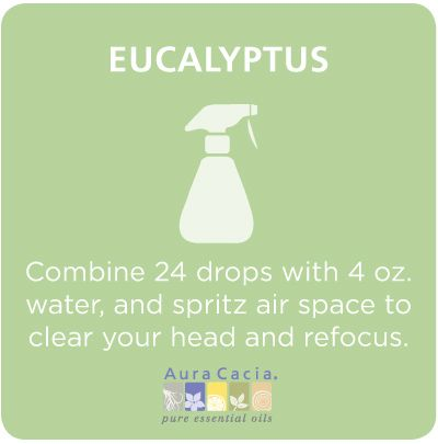 Eucalyptus essential oil air spray to help you clear your head and refocus. {Buy dōTERRA essential oils here: http://www.mydoterra.com/brittanyhutchings/}