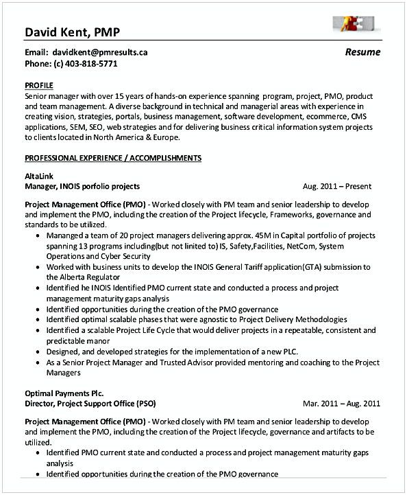 The 25+ best Project manager resume ideas on Pinterest Project - it infrastructure resume