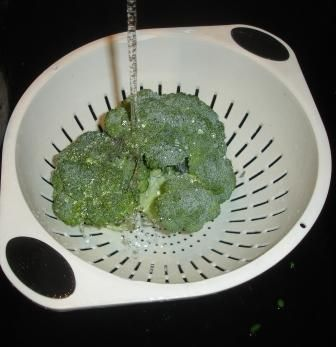 How to Freeze Broccoli - Easily! With Step-by-step Photos, Recipe, Directions, Ingredients and Costs