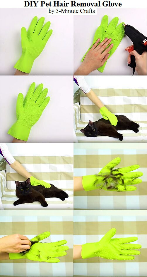 Diy Pet Hair Removal Glove By 5 Minute Crafts Pet Care Tips Pet Care Tips Pets Pet Hair Removal
