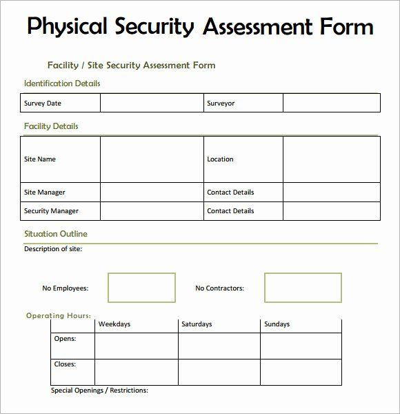 Security Risk Assessment Template Inspirational 7 Security