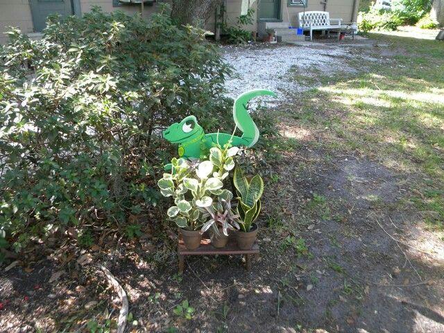 Gecko ladder planter