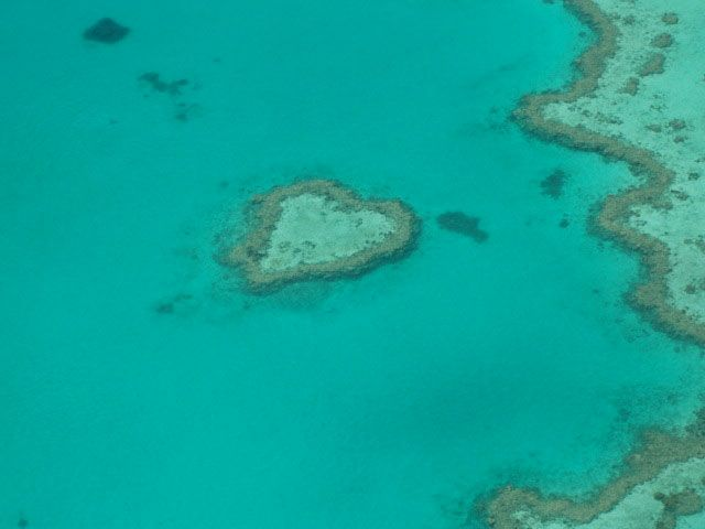 « Heart shaped reef » dans la barrière de corail, au large de l'Australie.  Photo de © Gillianbeen sur Géo