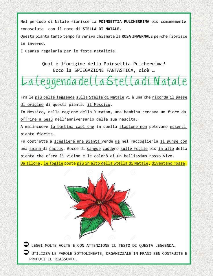Stella Di Natale Origini.Leggenda Sulla Stella Di Natale Frismarketingadvies
